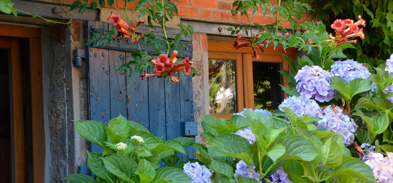 Detail bloemen Petite Maison